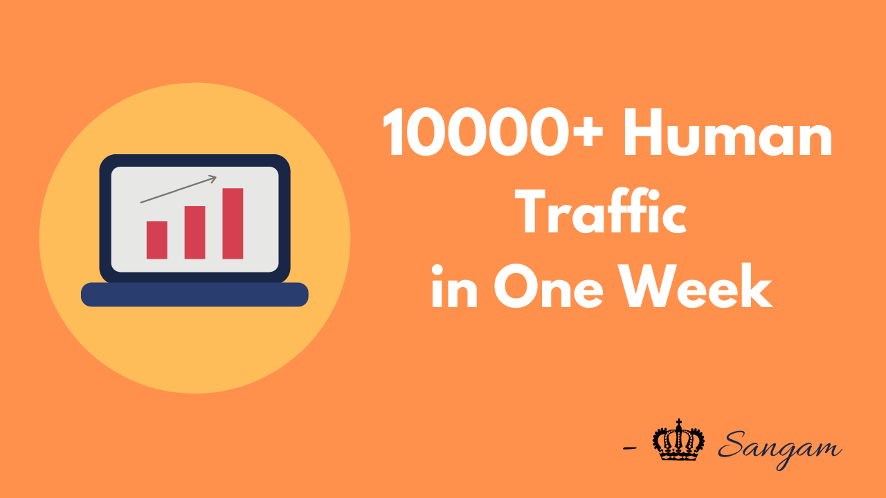 I will Drive 10,000+ Human Traffic to Your Website in one Week