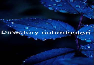 Your websites will be submited to 500 directories