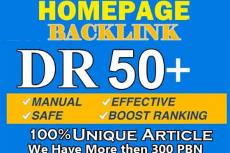 I will Provide you 5 PBN links From DR 50+ Do Follow Permanent Backlinks