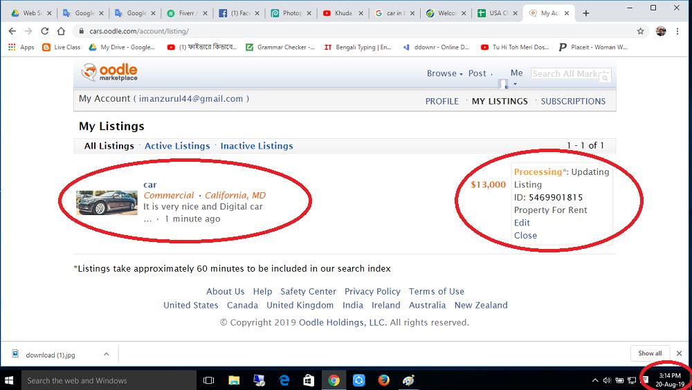 Search Engine Optimization Professional