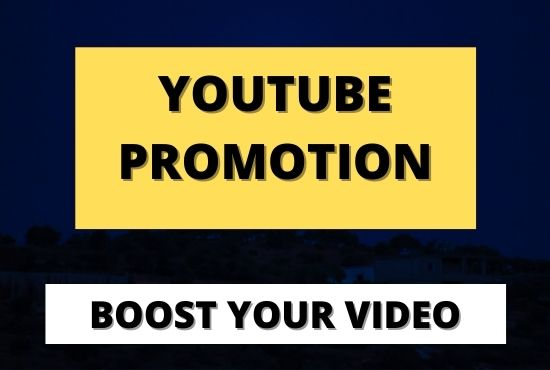 I will Do professional organic your youtube video promotion