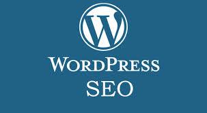 I will do SEO optimize your wordpress website