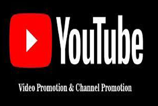 I will do YouTube Video traffic Promotion
