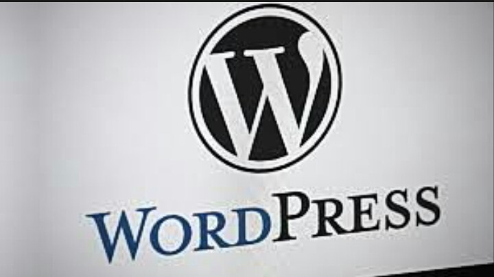 Create wordpress website with plugin fast seo