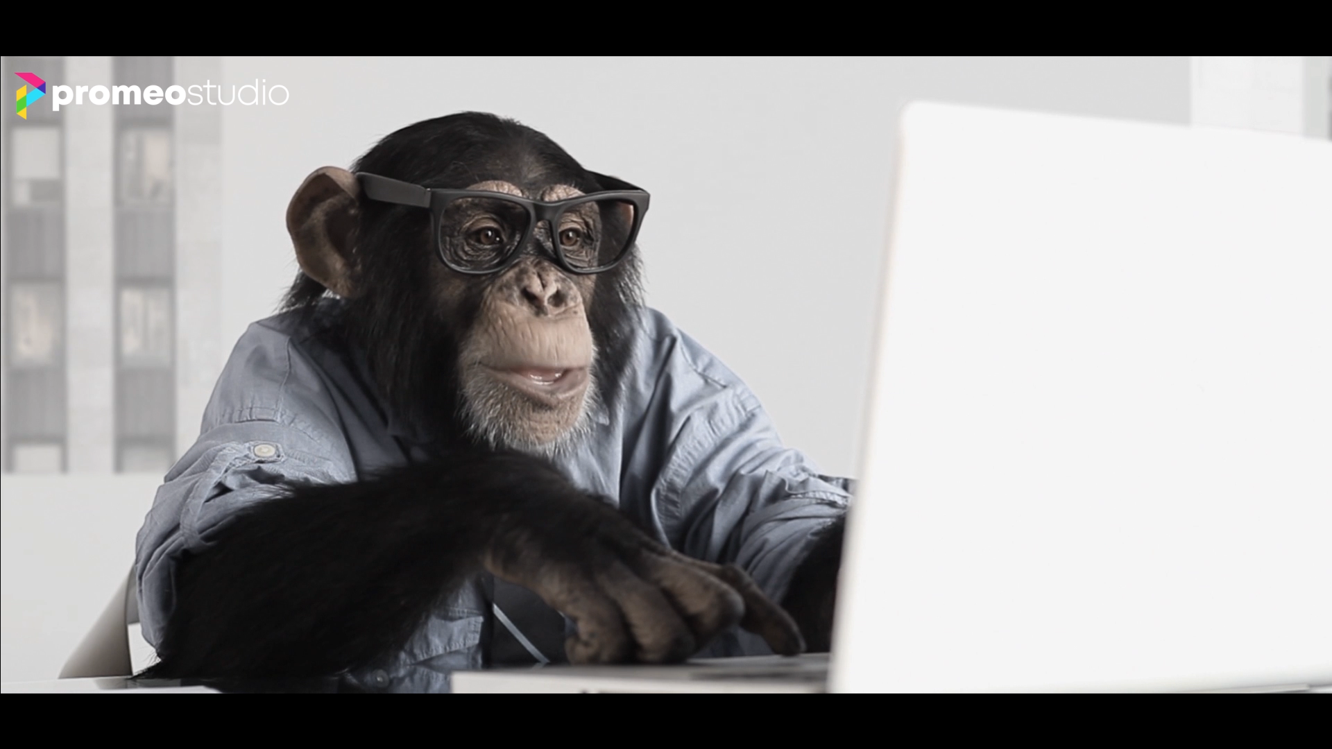 Make a monkey buisiness cinematic video commercials