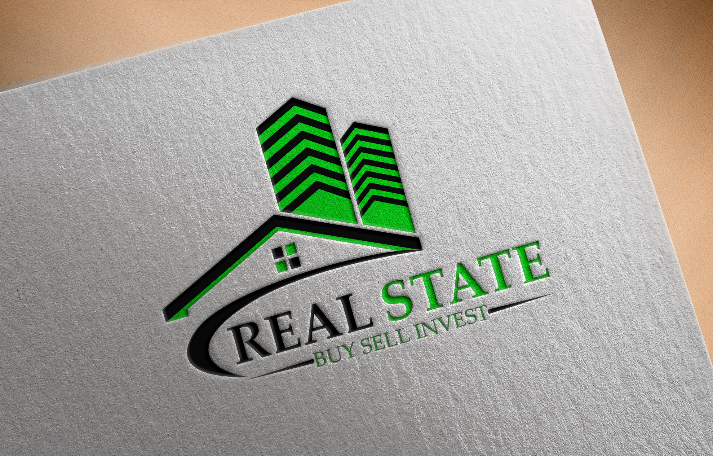do 2 amazing and profesional logo design for you