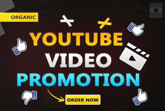 I will do youtube video promotion and grow organic traffic