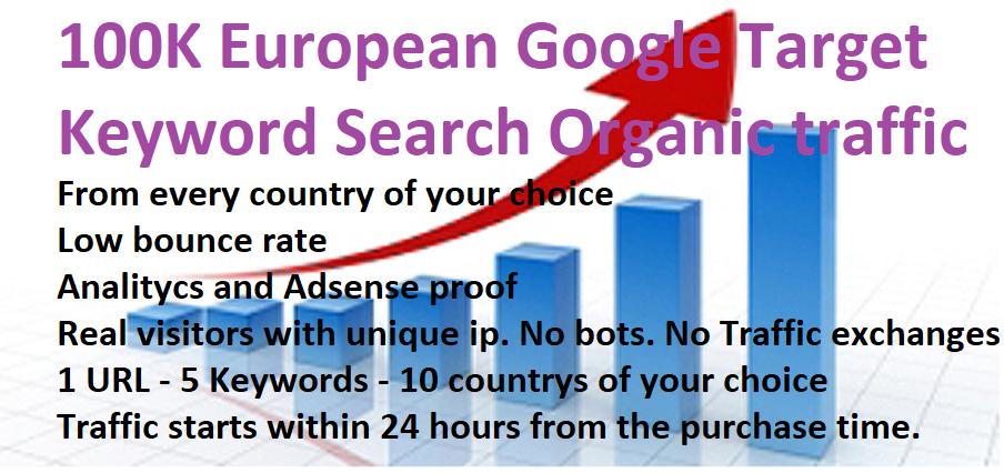 100K European targeted keyword traffic.