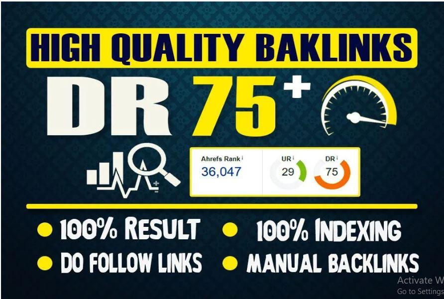 I will Do 30 PBN DR 75+ Homepage Pbn Post Backlinks