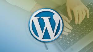 i will design or develop a professional wordpress website