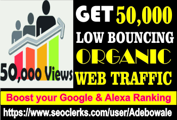 Get 50,000 Organic web traffic to your website/blog