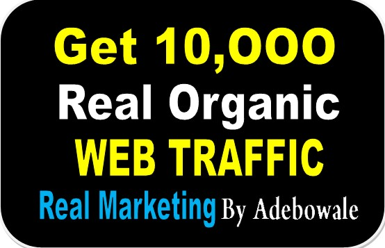 I will Drive 10,000+ Real Organic Web Traffic To our Website/Blog