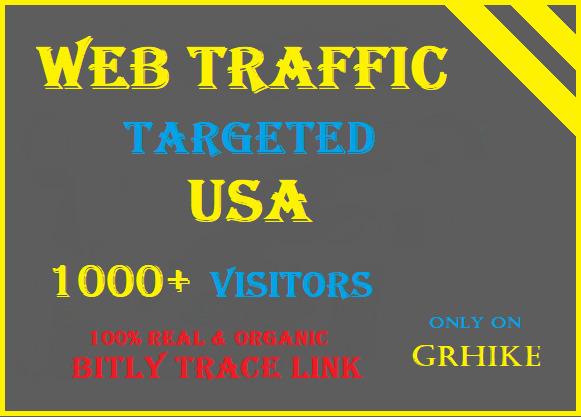 Drive safe Organic USA Traffic