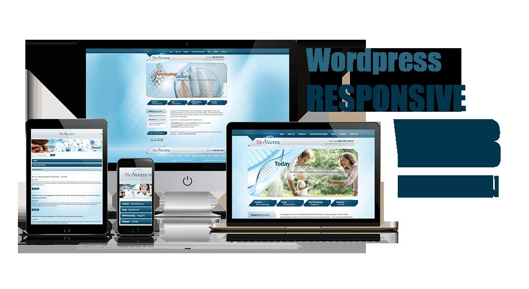 Create beautiful wordpress website or design wordpress site, Modern, Responsive, Ad read,business