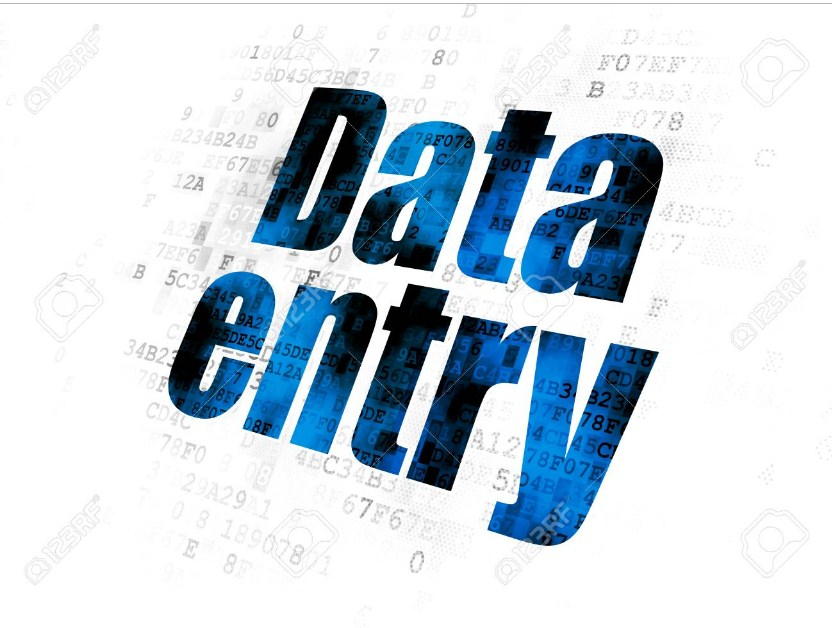 Be virtual assistant for excel data entry 24 hours