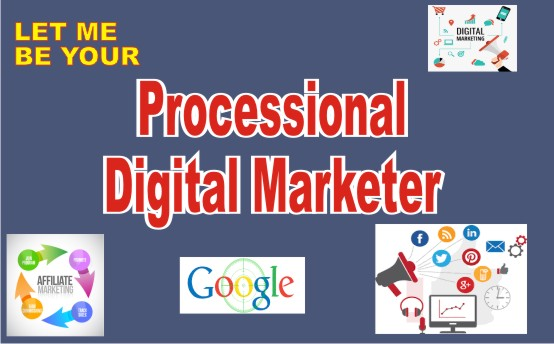 I will be your professional digital marketer