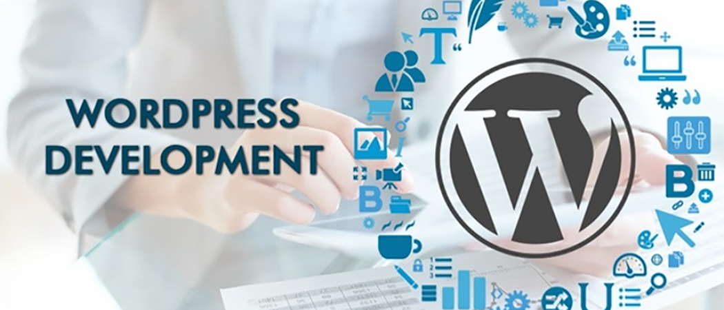 I will build and develop any kind of WordPress website
