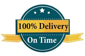 Professional logo design for you in 10 hour delivered.