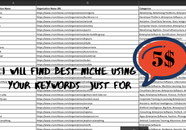 I will find Best Niche Using your Keywords
