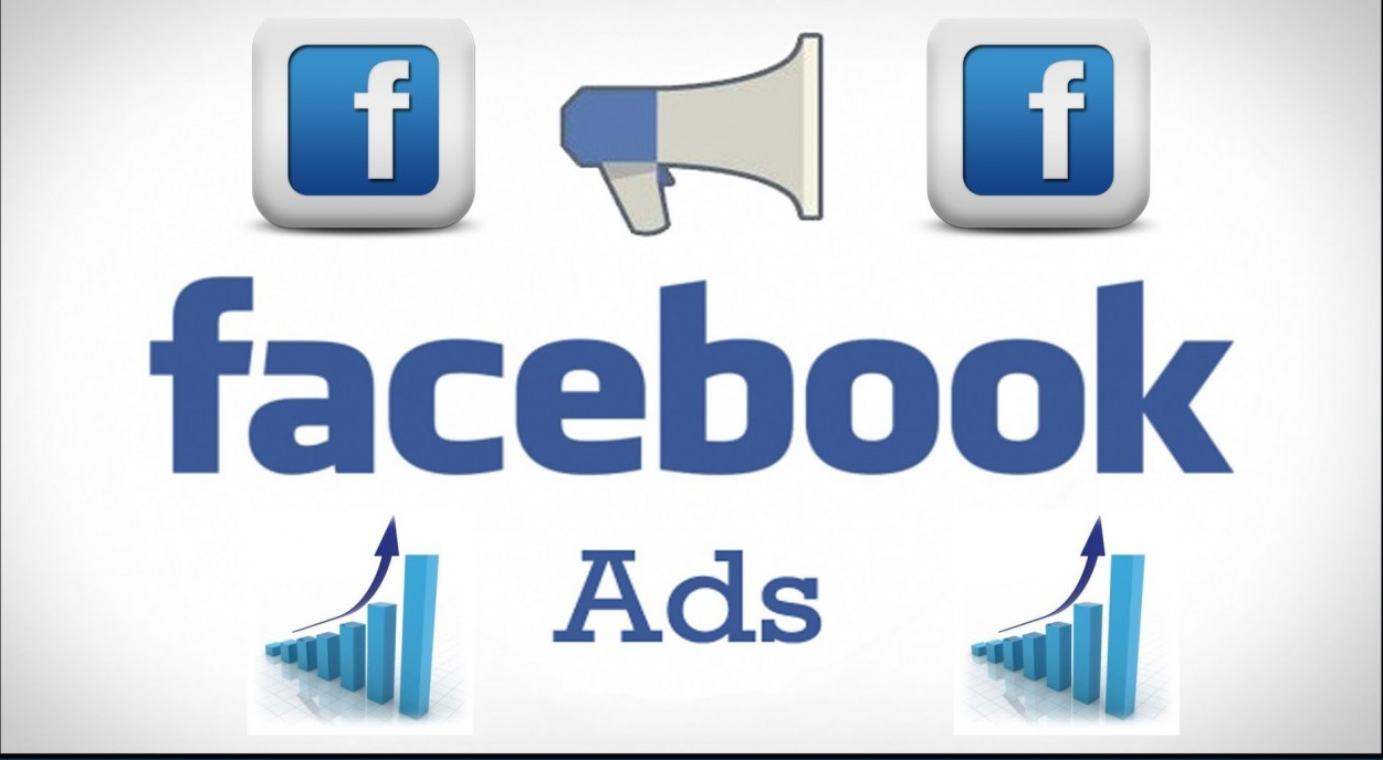 I will create facebook ads campaign,  research target audience