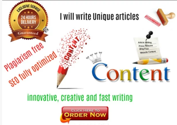 I will write amazing SEO blog posts and articles within 24 hours