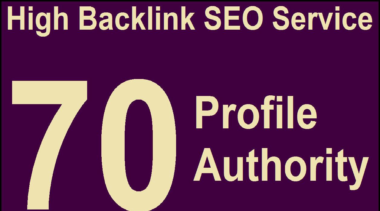15 High Quality Profile Authority Backlink Manual SEO Service