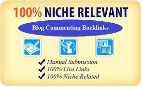 provide 100 niche relevant blog comments