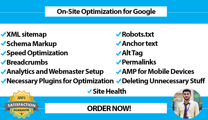 I will do Technical On-Page SEO of your website