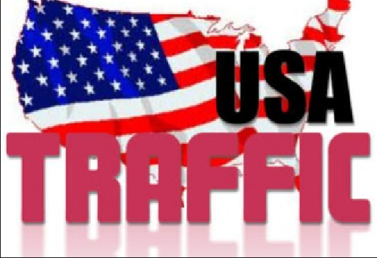 I will drive fast USA website traffic,  daily visitors for 30 days