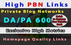Build 6 manual permanent high da pa 600 dofollow homepage,  pbn links