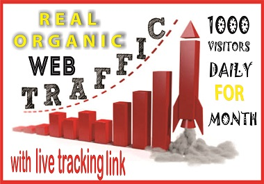 I will Expertly Provide 1000 High quality real organic web traffic for 30 days