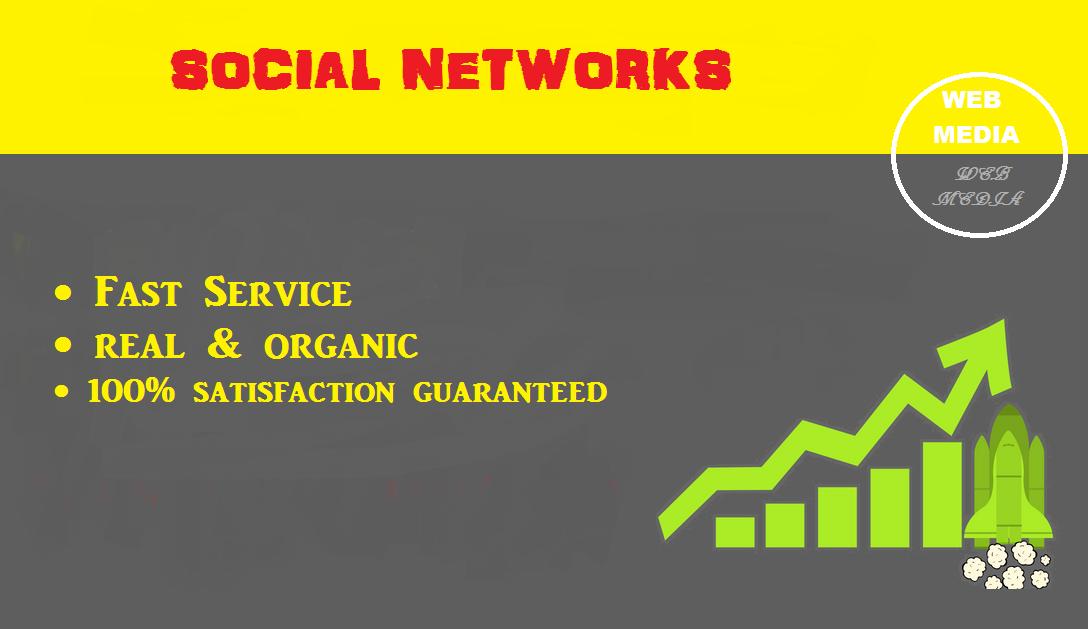 Real and Organic Social Media social Signals service
