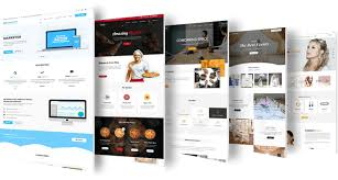 I will design a professional eCommerce WordPress site