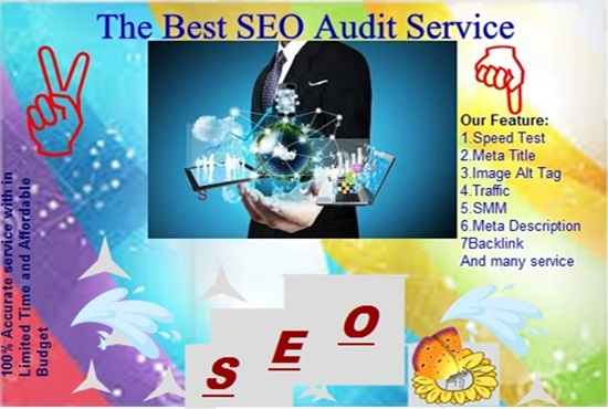 Provide you the best SEO AUDIT service