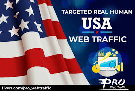 I will Generate 20,000 real organic traffic from USA to your website