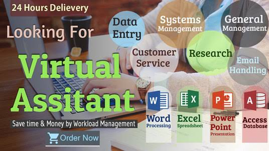 I will do any kind of data entry and be your virtual assistance