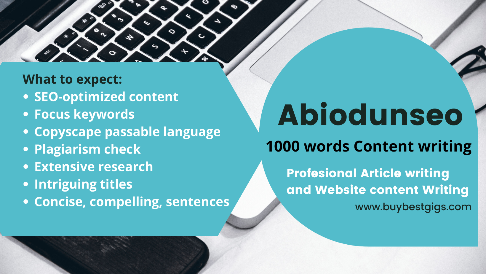 1000 words SEO Article writing service for blog and website