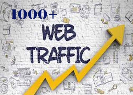 1000 Website Worldwide Traffic Visitors