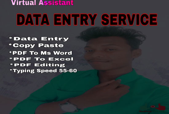 I will do excel data entry,copy past, pdf to word, typing