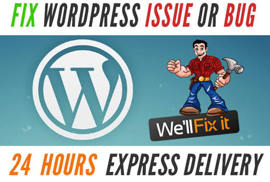 I will fix all issues with your wordpress website