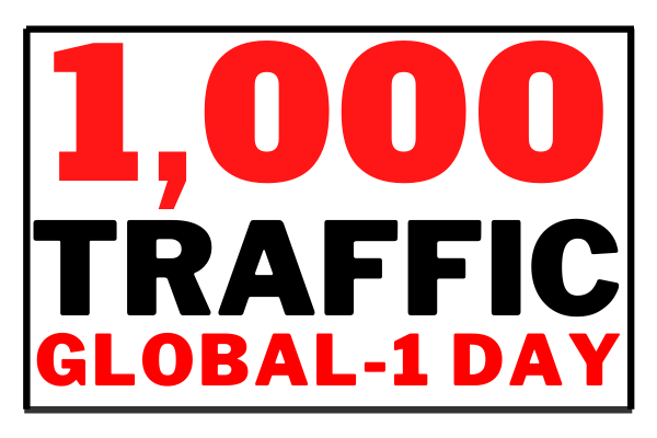 Real Traffic visits for one day