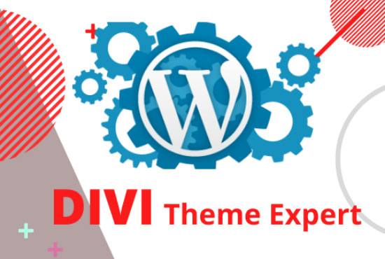 I will Design your Wordpress Website Using Divi Theme & DIVI Bulder