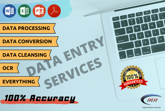 I will do any data entry or typing job