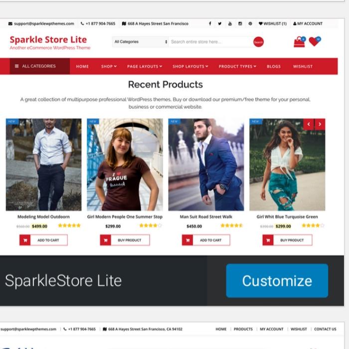 WordPress Woocomerce Website Customization
