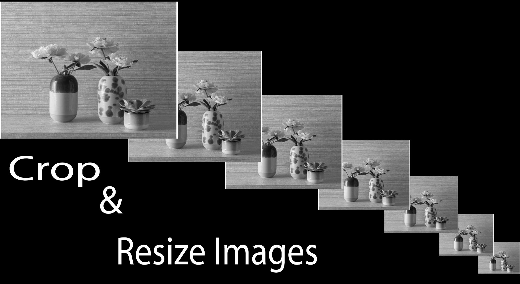 I will crop and Resize 100 Images,Photos,any thing