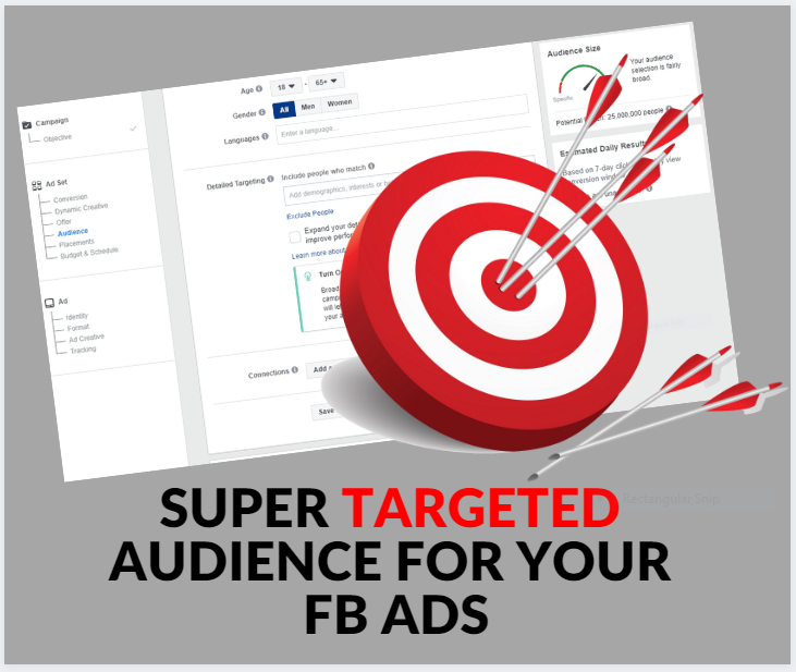 I will provide super targeted facebook ads audience for conversion