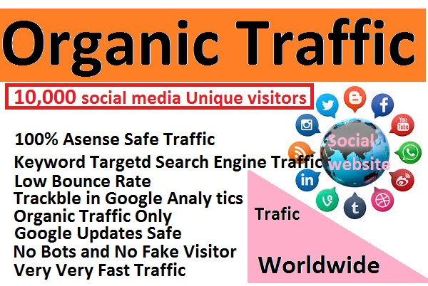 I will send 10,000 unique social media visitors for 30 days