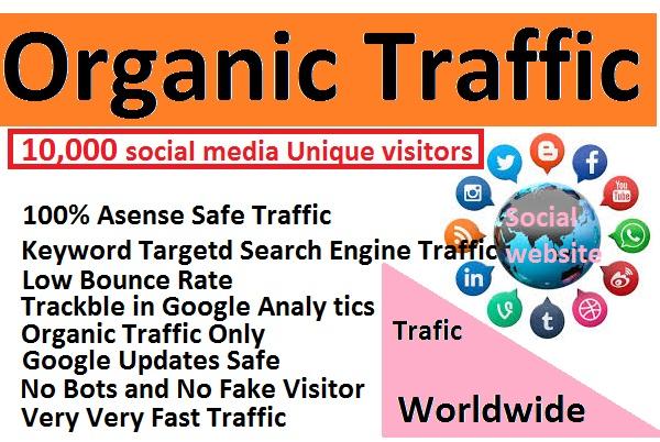 I will send 10,000 unique social media visitors for 30 days