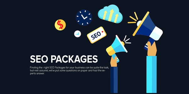 I Will Provide You manual SEO link building package