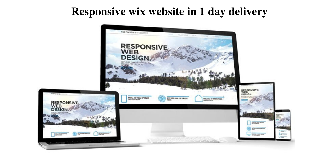 I will design responsive wix website in 1 day